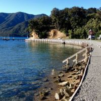 Reisebericht Neuseeland: Marlborough Sounds!